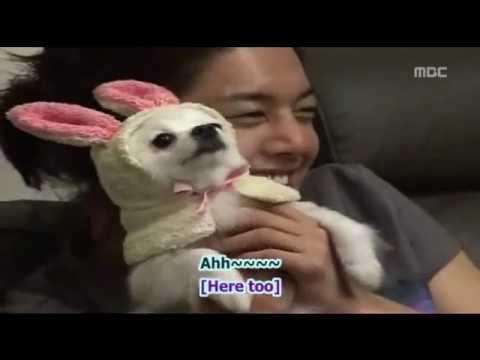 Thump thump (The Greatest Love OST) feat. JoongBo