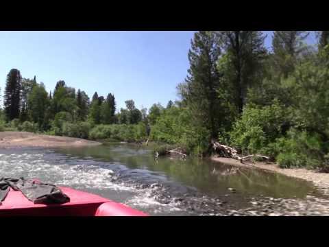 рыбалка на реке антроп видео