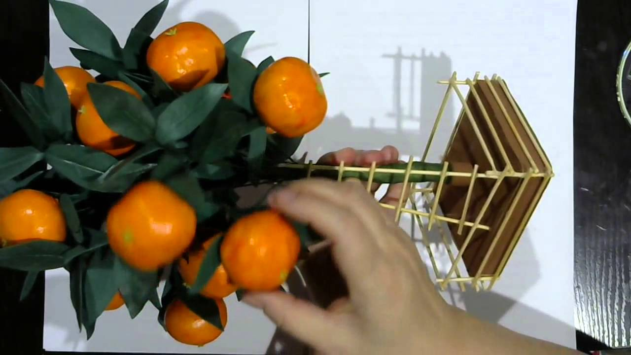 Декоративное мандариновое дерево своими руками 97