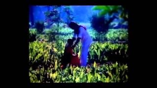 Thooral Ninnu Pochu Full Movie Songs│Jukebox│K. Bhagyaraj , Sulakshana