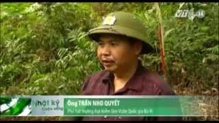 VTC14_Hà Nội: Núi Ba Vì xuất hiện vết nứt bất thường