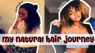 MY NATURAL HAIR JOURNEY W/PICTURES • BIG CHOP & RECOVERING FROM HEAT DAMAGE AND BLEACH • CALL ME KAM