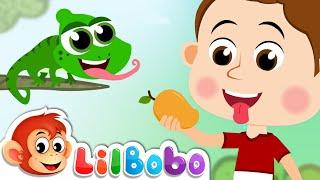 Five Senses Song | Little BoBo Nursery Rhymes - FlickBox Kids
