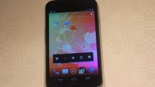 Samsung Galaxy Nexus Adobe Flash Android 4.0 Ready First Hands-On & Review!