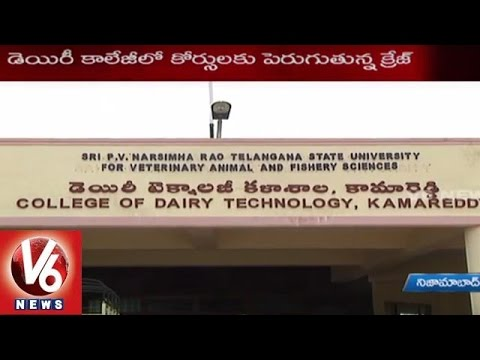 Telangana Youth shows interest in Dairy Technology studies - V6 News