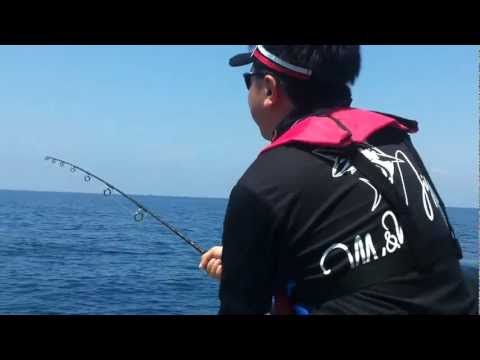 Sailfish @ Kuala Rompin - NTUAC Annual Offshore Fishing Competition 2012