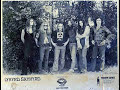 Lynyrd Skynyrd - On The Hunt