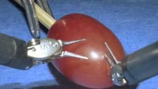 da Vinci Surgical System_ Surgery on a grape