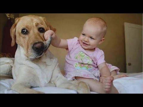 Прикольные видео про детей  Детки - няшки, зверушки -  милашки