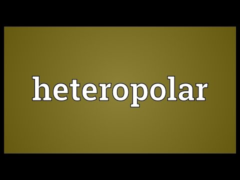 Header of heteropolar