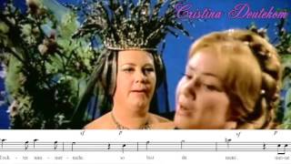 Who Sang The 34 Queen Of The Night 34 Staccatos The Best F6
