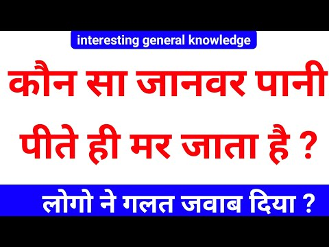 Gk के सवाल | interesting Gk | general knowledge | Gk questions in Hindi | interesting Gk in Hindi