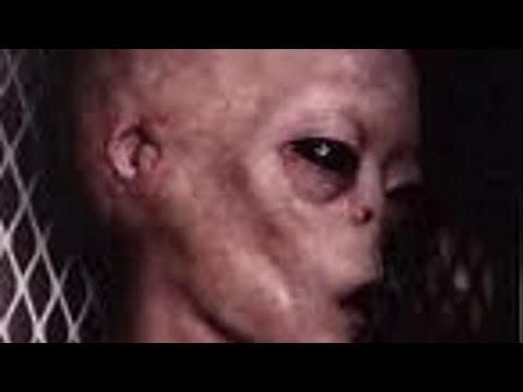 Echte Alien Fotos