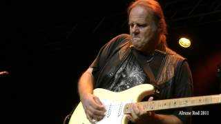 Watch Walter Trout Life In The Jungle video