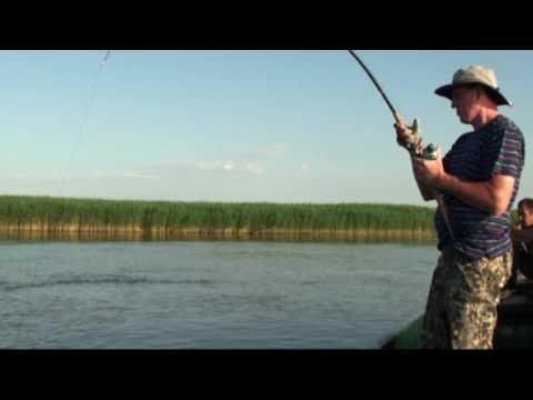 никополь рыбалка прогноз клева