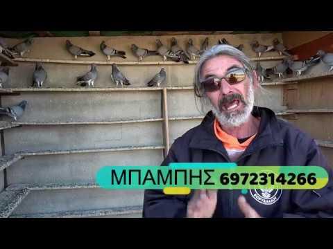 ΠΕΡΙΣΤΕΡΙΑ ΜΠΑΜΠΗΣ Ο ΙΝΔΙΑΝΟΣ 2018