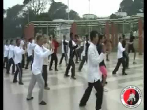 Authentic Yang Family Taichi 8 - Forms performed by Fu Sheng Yuan Taichi Academy - India Chapter