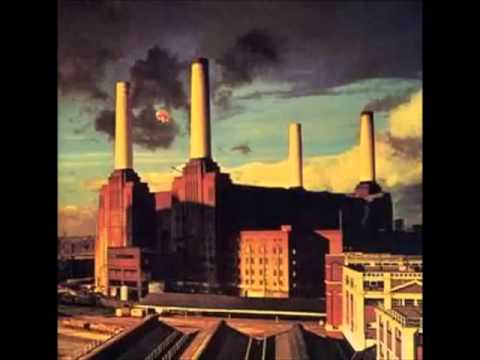 Pink Floyd Animals [FULL ALBUM] Music Videos