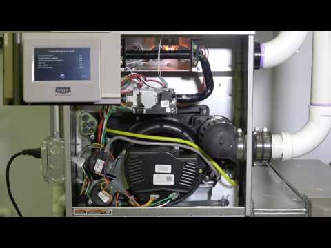 Gas Furnace: Operating Sequence (2 of 2)