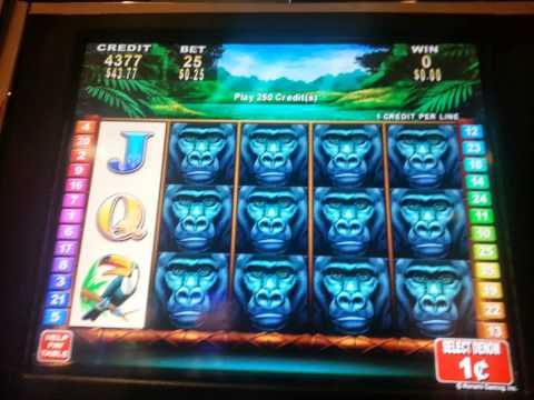 african diamond slot machine wins at the bellagio