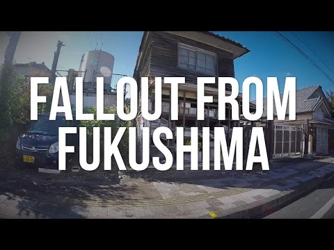 Fallout from Fukushima: The Radioactive Exclusion Zone