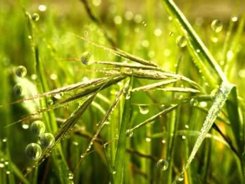 video musical sol y lluvia: