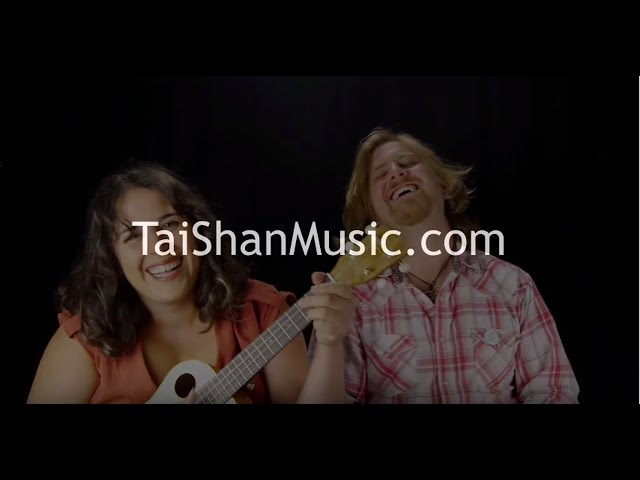 What's Up / Don't Worry Be Happy Mashup (cover by Tai Shan and Austin Garrison)