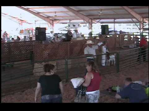 The 2013 Calaveras County Fair and Frog Jump Jubilee Livestock Auction Part One