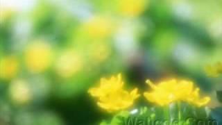 Watch Mary Black Wonder Child video
