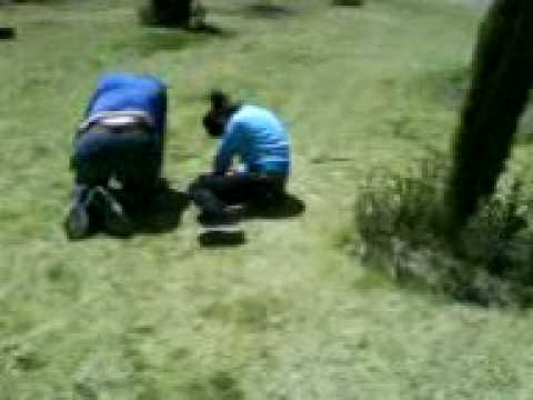 Gordo Tirando A Pendeja Cuni Toluca.3gp video