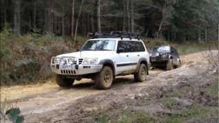 Nissan Patrol Recovery Mission Otways/Paddys Swamp Victoria Australia