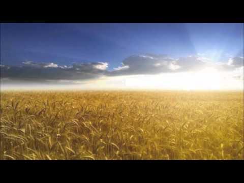 Amy Grant - Fields of Plenty / be Still my Soul