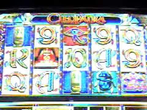 cleopatra 7500 dolares