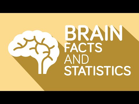 Interesting Facts You Didn't Know About Your Brain