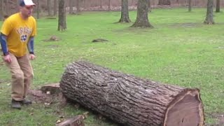 Genius Turns An Old Tree Trunk Into A Masterpiece Without Using A Single Power Tool