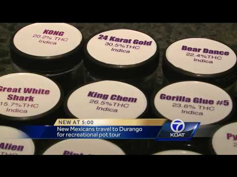 VIDEO: New Mexicans travel to Durango for recreational pot tour