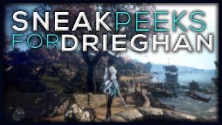 Drieghan Preparations, Sneak Peeks! | Part 1 | Black Desert Online