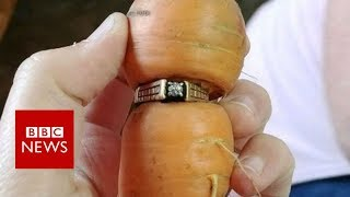 Woman finds long-lost diamond ring on carrot in garden - BBC News