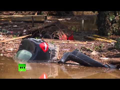 第比利斯洪水很多危險動物從動物園逃跑