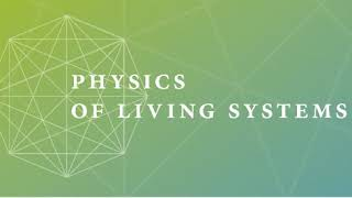 L2:  Physics of Living Systems (1/16)