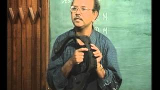 Mod-01 Lec-01 Introduction to Finite Element Method
