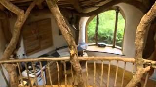 Das Öko-Haus von Simon Dale