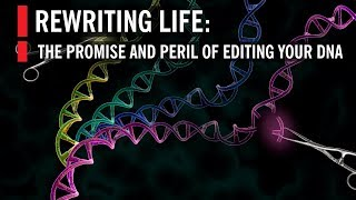 Editing Our DNA with CRISPR: The Promise and Peril of Rewriting Life