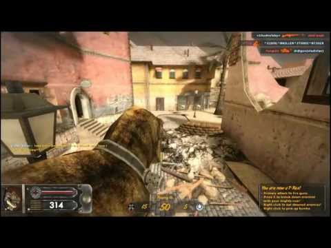 Groundhog D-day - A free Action Game - Miniclip