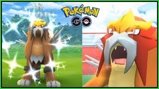 Auf der Jagd nach dem hässlichen Entein - Entei Raid-Day (Duo, Ausbeute, Shiny, Pokemon go deutsch)