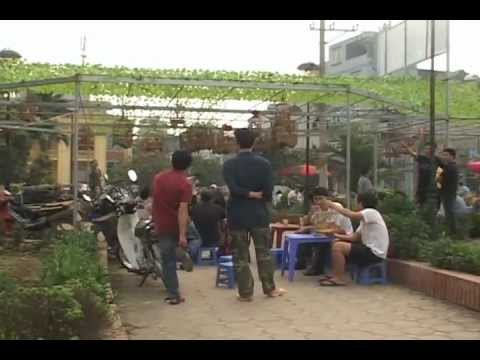 Cho SVC Yen Phuc - Ha Dong - Ha Noi .flv