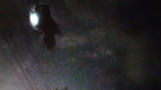 Demand Disclosure!! UFO Sightings Stealth Alien Aircraft? Top UFO Experts Talk!! 2014
