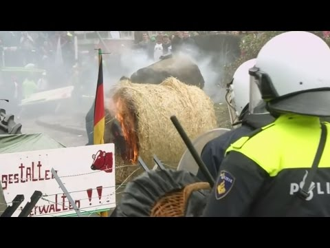 """Angry farmers protest in Brussels and warn the EU is """"drowning in milk"""""""