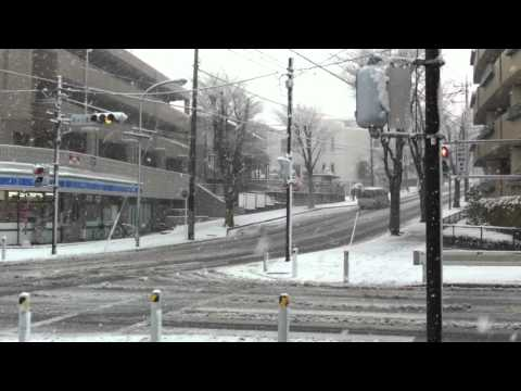 Tokyo Heavy Snow on February 29th 2012