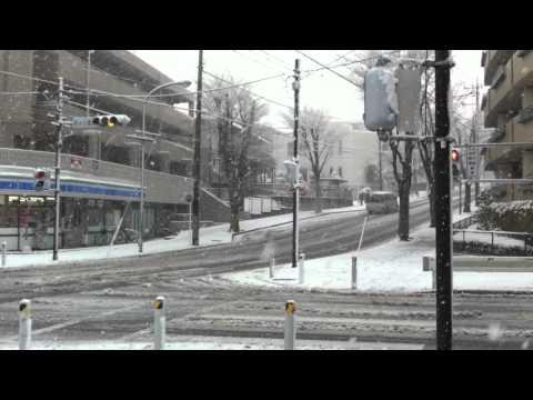 Tokyo Heavy Snow on February 29th 2012